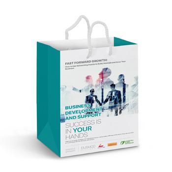 Medium-Laminated-Paper-Carry-Bag-aEUR-Full-Colour